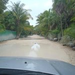 The road to Punta Allen just south of the Sian Kaan Arch