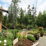 Cobble Wood Guesthouse and Bird Sanctuary House & Suites Foto