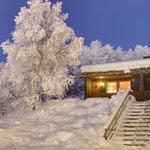 Hovi Cabin