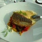 Prato Principal a base de peixe