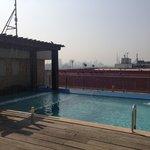 The bird bath, sorry, pool