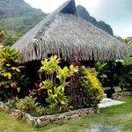 A bungalow at the Kaveka