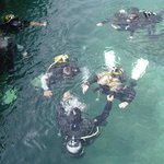 Taking first time divers for an introduction dive