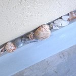 someone left us some nifty shells on the balcony :)