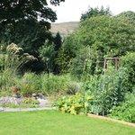 Garden with fruit & vegetable plots