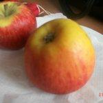 Délicieuses petites pommes de bienvenue