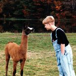 My nephew visiting with a young llama.