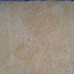 7307 Don't stay here!!  Stains on the carpet