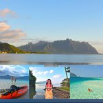 Escape to the Windward Side