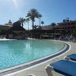 Pool view sunbed