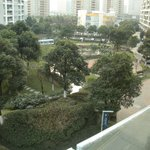 view of the green space from our balcony (winter time)