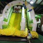 Tiger Big Slide