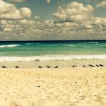 Beautiful beach day at the Fiesta Americana Condesa.