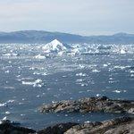 un mare di iceberg!