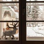 Winterimpressionen Loy-Stub'n
