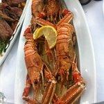 Adriatic shrimps