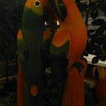 Wooden parrots en route to bar area