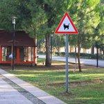 Karaalioglu Park Foto