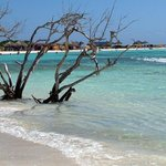 aruba's beach