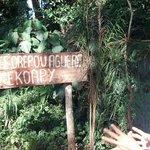 Aldea aborigen (entrada)