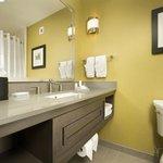 Hilton Garden Inn College Station Hotel Bathroom