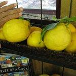 Picked Lemons on the shelf