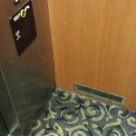 Elevator Filth - Was never cleaned