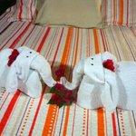 bed & towels