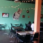 Inside the Station Cafe San Antonio