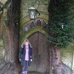 puerta elfica preciosa
