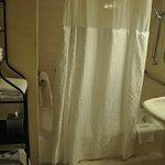 Handicapped Bathroom