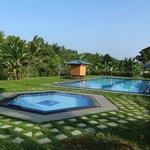 le magnifique jardin et la piscine