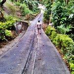 steep rd