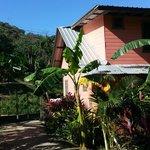 hostel accomodment
