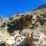 Great canyon views