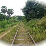 track goes all the way to Phnom Phen