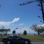 Kites are flying today