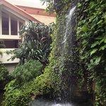 Великолепный искусственный водопад виден из лобби отеля