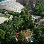 The panoramic view from the room