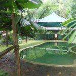Pool im Crocodylus