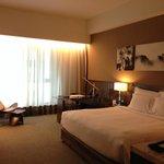 Room 1364 (Executive Room)