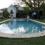 Lothlorien Pool