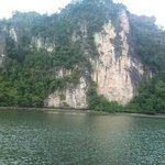 Kilim Geo Forest Pic #1