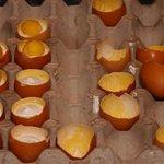 Dessert zubereitet in Eierschalen