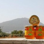 Honey I bought from Dvorat Hatavor with mount Tavor in the background