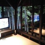 小夜のシアタールームです。 竹に囲まれた気持ちになれるお部屋です。