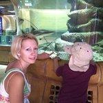 In the Aquarium.