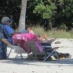 dog at pennecamp far beach