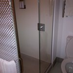 Toilet with shower. No door on shower