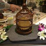 Bird's nest - presentation
